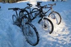 pb_SarahOJones_snowridenightsledge021
